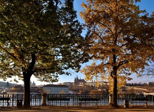 Vítězná fotografie v kategorii Lípy Prahy s názvem Za řekou od Markéty Zachové (Alšovo nábřeží)