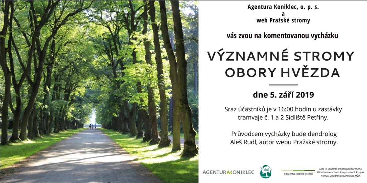 Přidejte se na zářijové procházky za pražskými stromy
